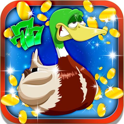 Lucky Feather Slots: Earn beautiful bird promotion iOS App