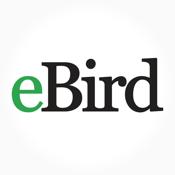 eBird by Cornell Lab of Ornithology icon