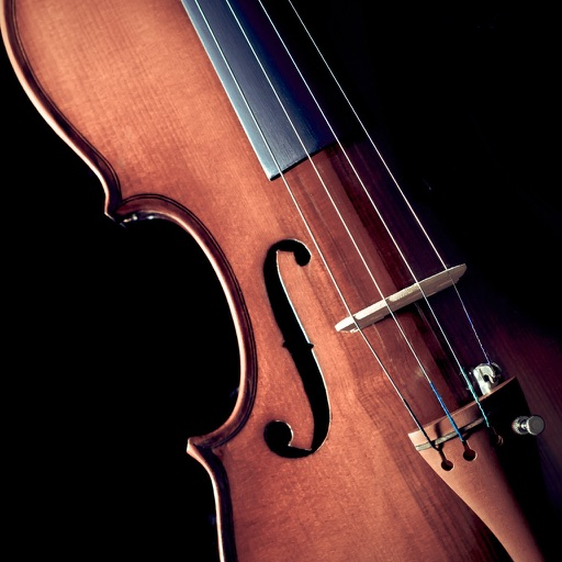 Violin for Beginners: How to Learn Violin Online | Trala ...