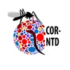 COR-NTD Meeting