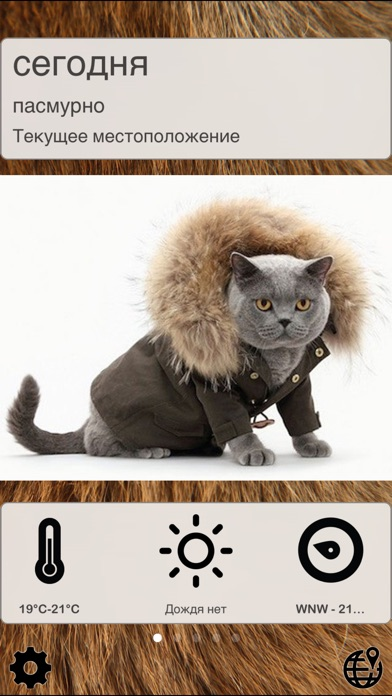 Weather CatsСкриншоты 1