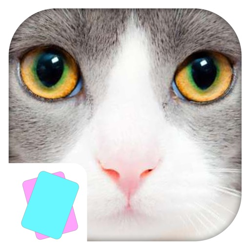 Animals Flashcard & Sounds - Learn the first words iOS App