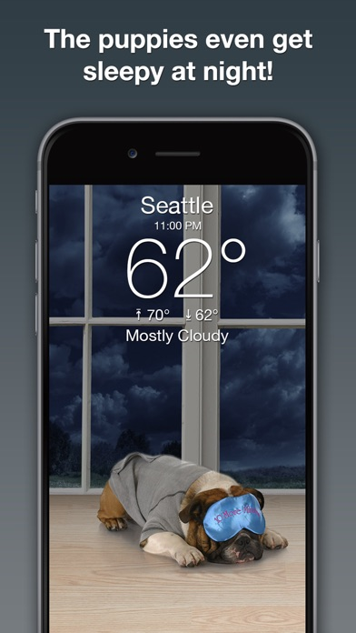 download Weather Puppy: Forecast + Dogs apps 4