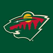 MN Wild NHL icon