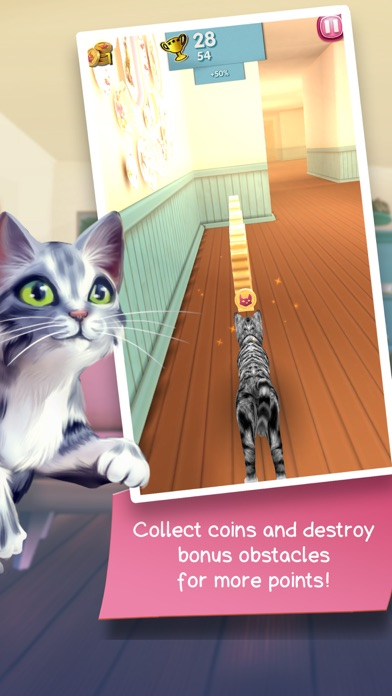 Cat Run - Кошачий побег Screenshot