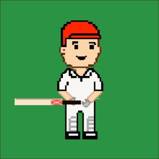 Mini Cricket iOS App