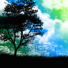 Nature Music - Relaxing Sounds Of Nature to Calm, Reduce Stress & Anxiety Release