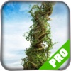Game Pro - Grow Home Version