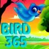bird 365