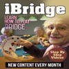 IBridge - Learn Bridge Magazine