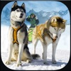 Winter Snow Dog Sledding Ski Simulator 3D
