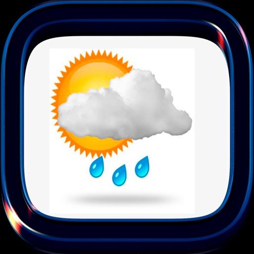 Местная погода-дождь
