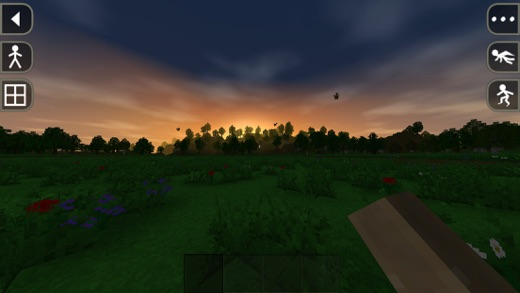 Survivalcraft Day One Screenshot