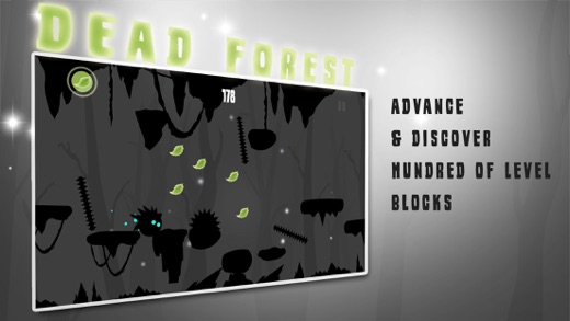 Dead Forest: Darkness Revealed Screenshot