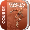 Course for Essential Anatomy