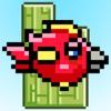 tabby bird