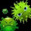 Free Virus Attack