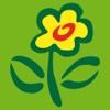 FloraPrima Blumenversand