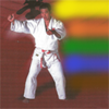 Judo Gokyo - Metzger Soft