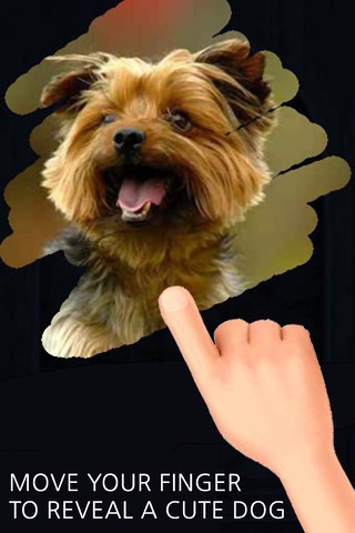 A Dog game to scratch Hidden Pics - Mini game for Kids - Playing cool breed games - animal best dogs pics screenshot 1