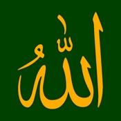 Ya Allah (Duas from Quran)