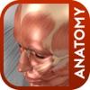 Animated Orthopedic Anatomy Master