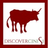 Discover Cinisi