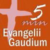 Evangelii Gaudium 5 min