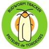Budworm Tracker
