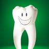 Dictionary of  Dental Terminology