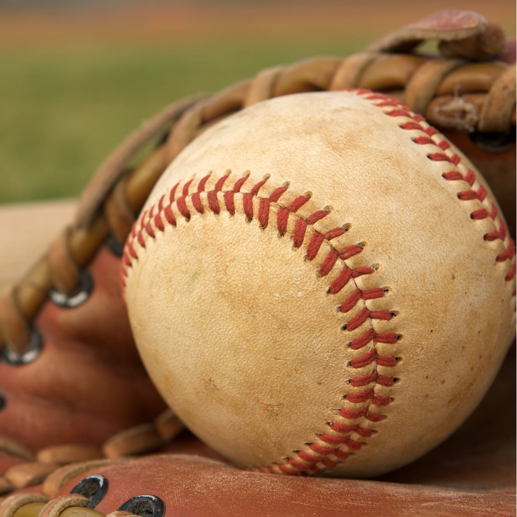 Baseball Word Search FREE