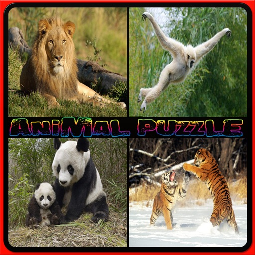 Kids Animal Puzzle - Wild animal puzzle for kids iOS App
