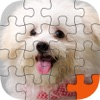 Puppy Play Jigsaw Puzzle Touch Party
