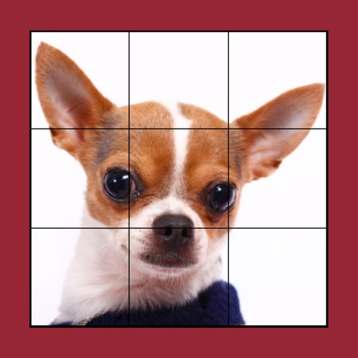 Dog Puzzles Extreme! iOS App