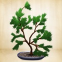 Make a Bonsai icon