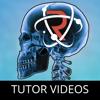 Revision App - Tutor Videos & Revision Guides: GCSE, A-Level & 11 Plus App