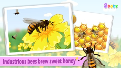 download Bee - InsectWorld A story book about insects for children apps 2