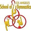 los angeles school of gym