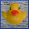 Duck Invader
