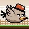Grumpy Bird - Endless Arcade Flyer