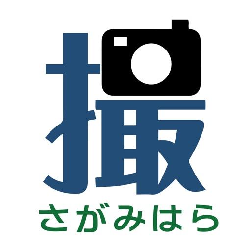 相模原市道路通報アプリ パッ!撮るん。