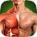 人体解剖学3D - 骨骼和肌肉 PRO