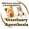 Veterinary Anesthesia 5000 Flashcards & Exam Quiz