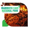 Mammoth Cave National Park Travel Guide
