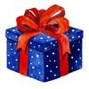 iRemember: Simple birthday reminder simple reminder program
