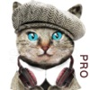 Cat Translator Pro,talk to cats game with meow