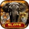 Safari Sundown Slots Casino Play Free Slot Machine