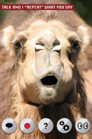 Talking Camel screenshot 1