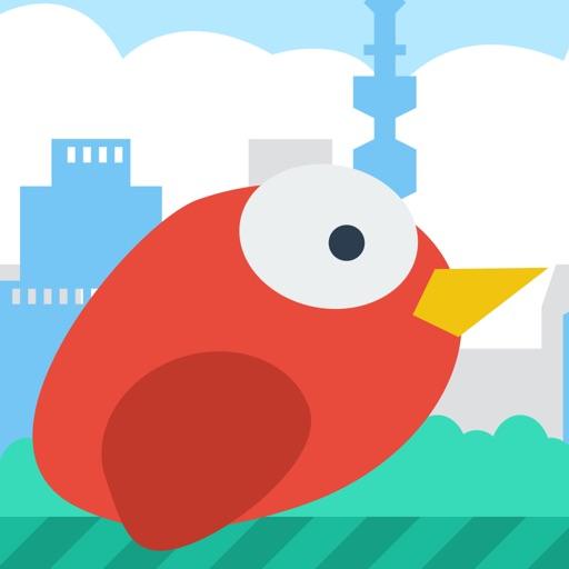 EasyBird iOS App