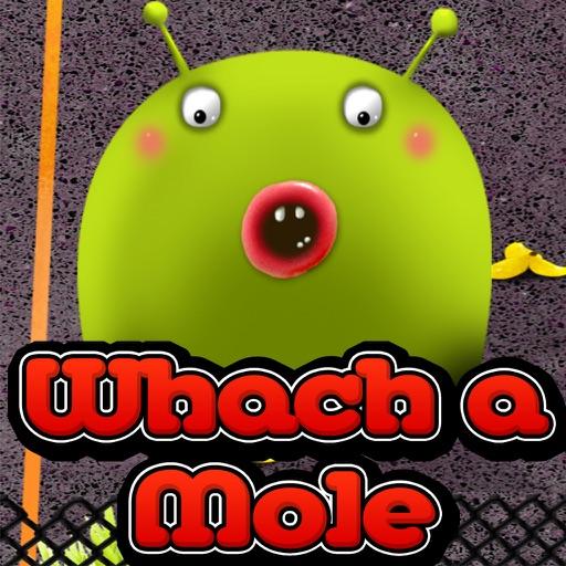 Bash the Hole iOS App